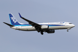 Echo-Kiloさんが、新千歳空港で撮影した全日空 737-881の航空フォト(飛行機 写真・画像)