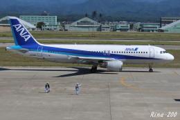 RINA-281さんが、小松空港で撮影した全日空 A320-211の航空フォト(飛行機 写真・画像)