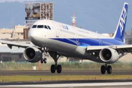Fly Yokotayaさんが、伊丹空港で撮影した全日空 A321-211の航空フォト(飛行機 写真・画像)
