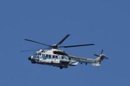ぬま_FJHさんが、羽田空港で撮影した海上保安庁 EC225LP Super Puma Mk2+の航空フォト(飛行機 写真・画像)