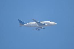 tamtam3839さんが、中部国際空港で撮影したボーイング 747-4J6(LCF) Dreamlifterの航空フォト(飛行機 写真・画像)