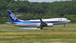 撮り撮り人さんが、岡山空港で撮影した全日空 737-881の航空フォト(飛行機 写真・画像)