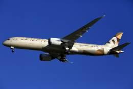 kaltさんが、ブリスベン空港で撮影したエティハド航空 787-9の航空フォト(飛行機 写真・画像)