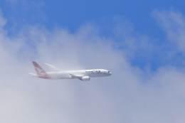 kaltさんが、ブリスベン空港で撮影したカンタス航空 787-9の航空フォト(飛行機 写真・画像)