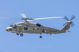 ROSENTHALさんが、名古屋飛行場で撮影した海上自衛隊 SH-60Jの航空フォト(飛行機 写真・画像)