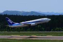 hikanagiさんが、大館能代空港で撮影した全日空 737-881の航空フォト(飛行機 写真・画像)