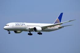 航空フォト:N13954 ユナイテッド航空 787-9