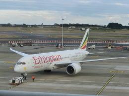 ヒロリンさんが、ブリュッセル国際空港で撮影したエチオピア航空 787-8 Dreamlinerの航空フォト(飛行機 写真・画像)