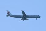 kuro2059さんが、中部国際空港で撮影した中国国際航空 A321-232の航空フォト(飛行機 写真・画像)