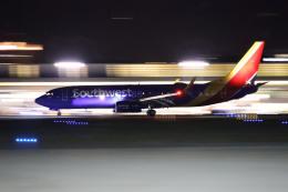 masa707さんが、ノーマン・Y・ミネタ・サンノゼ国際空港で撮影したサウスウェスト航空 737-8H4の航空フォト(飛行機 写真・画像)