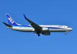 じーく。さんが、那覇空港で撮影した全日空 737-881の航空フォト(飛行機 写真・画像)