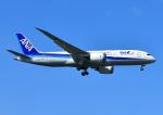 じーく。さんが、那覇空港で撮影した全日空 787-8 Dreamlinerの航空フォト(飛行機 写真・画像)