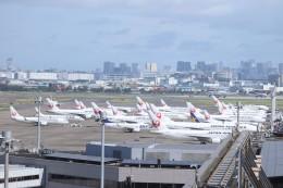 mktさんが、羽田空港で撮影した日本航空 767-346/ERの航空フォト(飛行機 写真・画像)