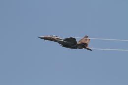 デウスーラ294さんが、小松空港で撮影した航空自衛隊 F-15DJ Eagleの航空フォト(飛行機 写真・画像)
