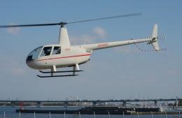 ブルーさんさんが、大阪ヘリポートで撮影した小川航空 R44 Ravenの航空フォト(飛行機 写真・画像)