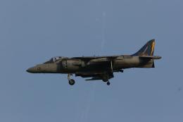 F-4さんが、横田基地で撮影したアメリカ海兵隊 AV-8B Harrier II+の航空フォト(飛行機 写真・画像)