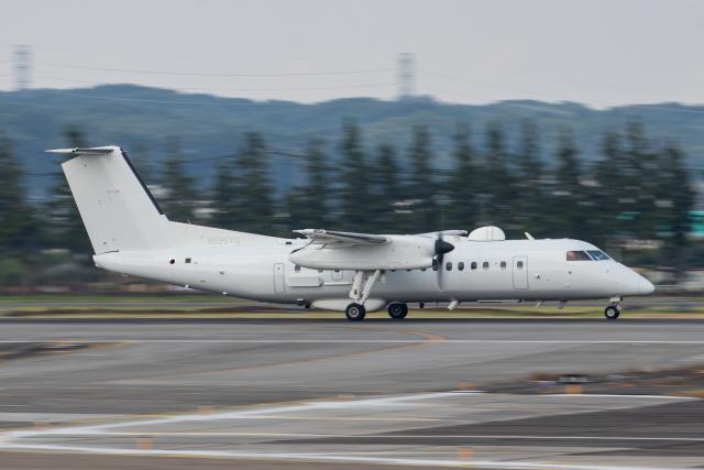 KANTO61さんが、横田基地で撮影したアメリカ企業所有 DHC-8-315B Dash 8の航空フォト(飛行機 写真・画像)