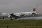 水月さんが、伊丹空港で撮影した日本航空 767-346/ERの航空フォト(飛行機 写真・画像)