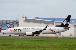 shibu03さんが、成田国際空港で撮影した山東航空 737-85Nの航空フォト(飛行機 写真・画像)