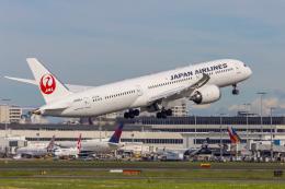 mameshibaさんが、シドニー国際空港で撮影した日本航空 787-9の航空フォト(飛行機 写真・画像)