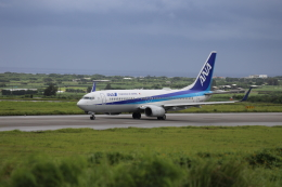 Musondaさんが、新石垣空港で撮影した全日空 737-881の航空フォト(飛行機 写真・画像)
