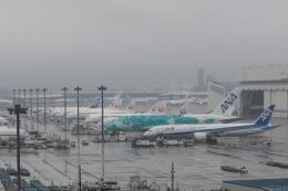木人さんが、成田国際空港で撮影した全日空 787-9の航空フォト(飛行機 写真・画像)