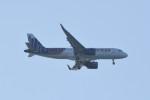 kuro2059さんが、中部国際空港で撮影した香港エクスプレス A320-271Nの航空フォト(飛行機 写真・画像)