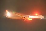 木人さんが、成田国際空港で撮影したターキッシュ・エアラインズ 787-9の航空フォト(飛行機 写真・画像)