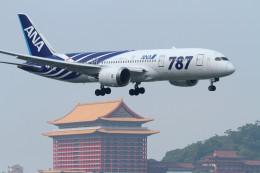 コニタンよっちゃんさんが、台北松山空港で撮影した全日空 787-8 Dreamlinerの航空フォト(飛行機 写真・画像)