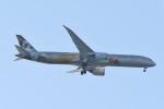 kuro2059さんが、中部国際空港で撮影したエティハド航空 787-10の航空フォト(飛行機 写真・画像)