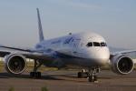 黄色の168さんが、新千歳空港で撮影した全日空 787-8 Dreamlinerの航空フォト(飛行機 写真・画像)