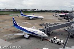 JL6DXRさんが、福岡空港で撮影したANAウイングス 737-54Kの航空フォト(飛行機 写真・画像)