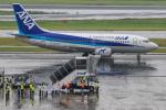 kuraykiさんが、羽田空港で撮影したANAウイングス 737-54Kの航空フォト(飛行機 写真・画像)