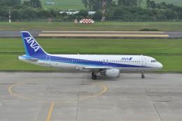 kumagorouさんが、仙台空港で撮影した全日空 A320-211の航空フォト(飛行機 写真・画像)