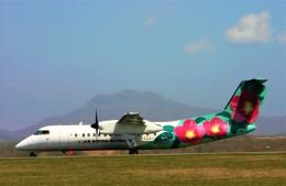 にしやんさんが、函館空港で撮影したエアーニッポンネットワーク DHC-8-314Q Dash 8の航空フォト(飛行機 写真・画像)