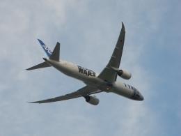 ぶるーすかいさんが、成田国際空港で撮影した全日空 787-9の航空フォト(飛行機 写真・画像)