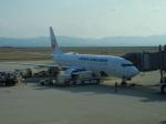 ぶるーすかいさんが、関西国際空港で撮影した日本航空 737-846の航空フォト(飛行機 写真・画像)