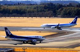 shibu03さんが、成田国際空港で撮影したANAウイングス 737-54Kの航空フォト(飛行機 写真・画像)