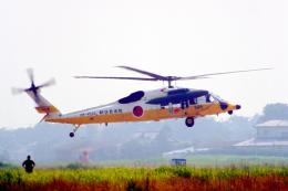 AWACSさんが、松島基地で撮影した航空自衛隊 UH-60Jの航空フォト(飛行機 写真・画像)