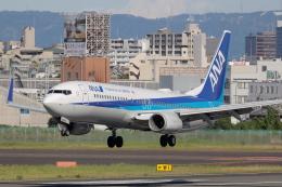 Fly Yokotayaさんが、伊丹空港で撮影した全日空 737-881の航空フォト(飛行機 写真・画像)