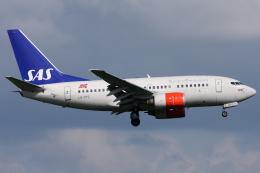 Hariboさんが、アムステルダム・スキポール国際空港で撮影したスカンジナビア航空 737-683の航空フォト(飛行機 写真・画像)