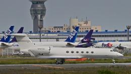 パンダさんが、成田国際空港で撮影したユタ銀行 G-Vの航空フォト(飛行機 写真・画像)