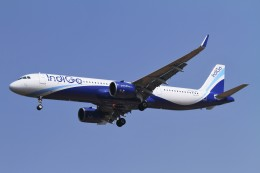 BTYUTAさんが、インディラ・ガンディー国際空港で撮影したインディゴ A321-271NXの航空フォト(飛行機 写真・画像)