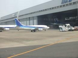 ピーノックさんが、羽田空港で撮影したANAウイングス 737-54Kの航空フォト(飛行機 写真・画像)