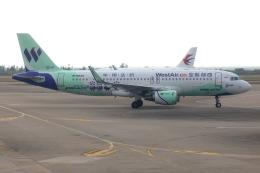 TIA spotterさんが、珠海金湾空港で撮影した西部航空 A320-214の航空フォト(飛行機 写真・画像)