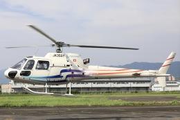 Hii82さんが、八尾空港で撮影したグラフィック AS350B2 Ecureuilの航空フォト(飛行機 写真・画像)
