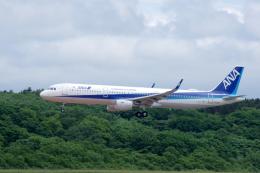 kitayocchiさんが、新千歳空港で撮影した全日空 A321-211の航空フォト(飛行機 写真・画像)