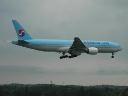 ぶるーすかいさんが、成田国際空港で撮影した大韓航空 777-2B5/ERの航空フォト(飛行機 写真・画像)