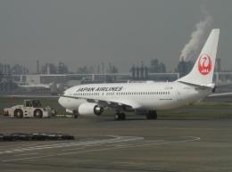 ぶるーすかいさんが、羽田空港で撮影した日本航空 737-846の航空フォト(飛行機 写真・画像)