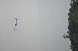 k_yamaさんが、山口宇部空港で撮影した全日空 767-381/ERの航空フォト(飛行機 写真・画像)